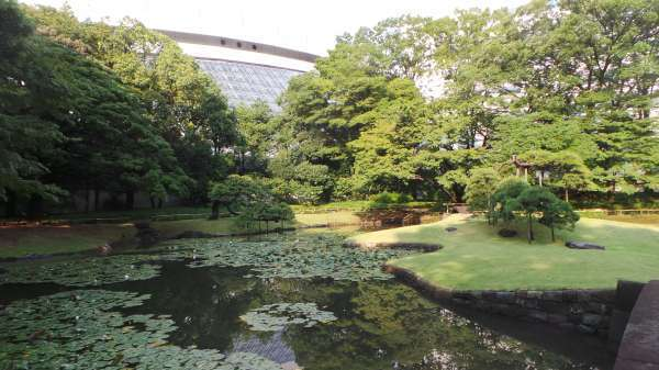 Great Ideas for a Bunkyo Trip