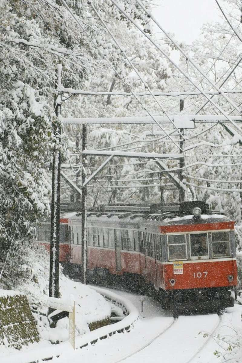 Snowy day in Hakone, we managed to return at last !!
