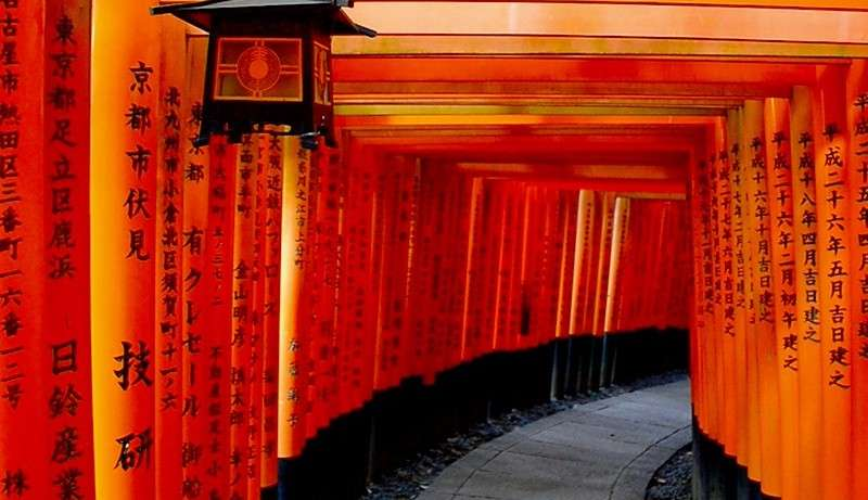 Top 10 reasons to use a local tour guide in Japan