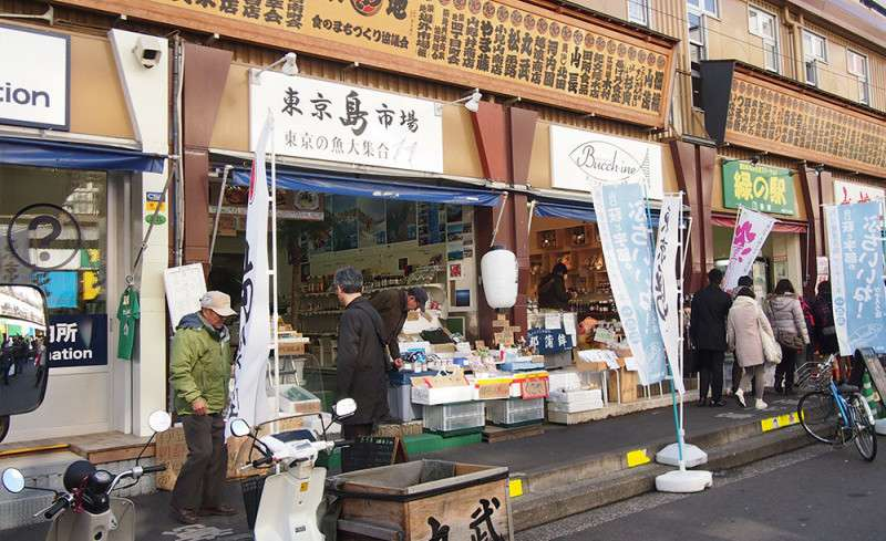 Tsukiji Fish Market - What to eat and what to do