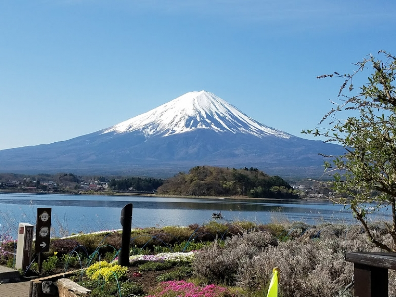 Mt. Fuji, 1-day Spectacular Tour from Tokyo