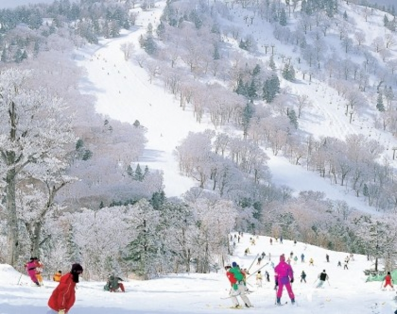 Winter in Japan: 11 Things to Do and Places to See in 2019-2020