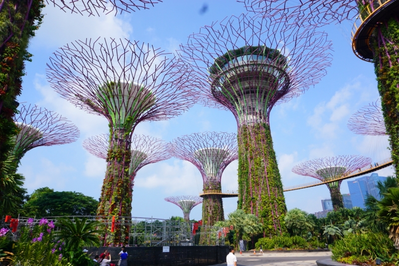 11 Things to Do In Singapore: The Top Attractions
