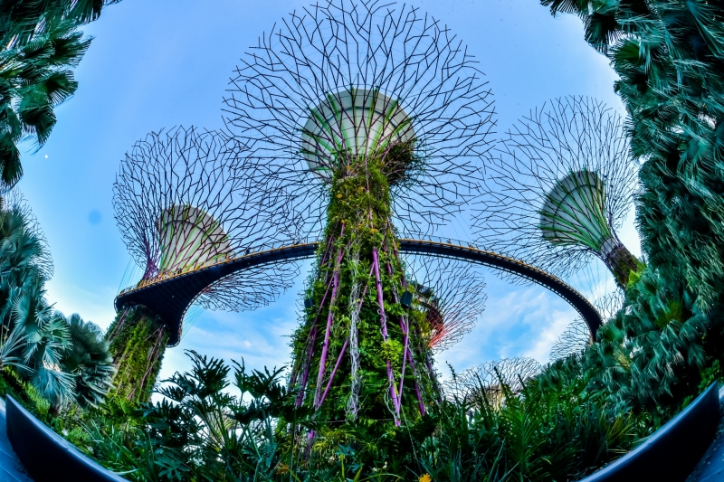 10 Best Places to Visit in Singapore: All You Need to Know