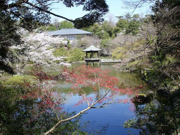 Four Free Sights in Chiba