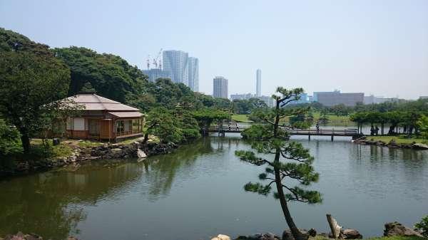 Hama Detached Palace Garden (Hamarikyu Garden)