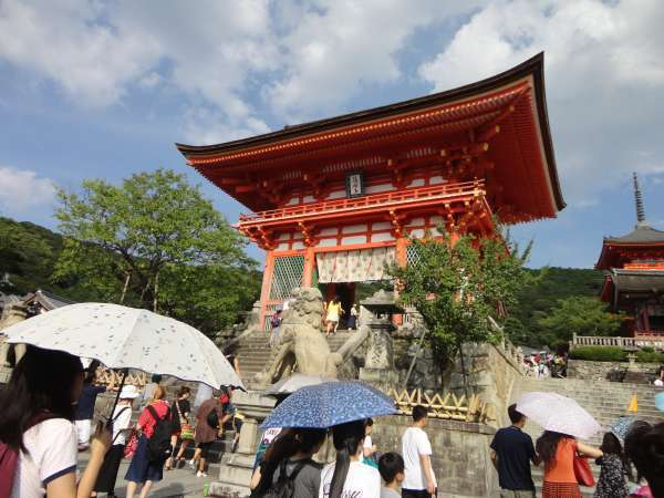 Kyoto Sightseeing wearing Kimono