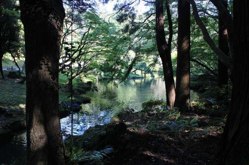 Monju-no-Ike Pond in Naritasan Park.
