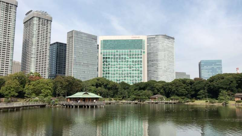 Hama-rikyu Gardens, which is an mazing forested area in the middle of Tokyo