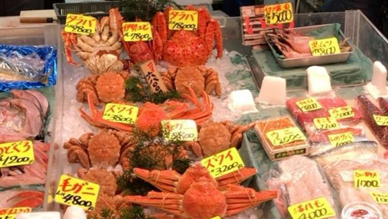Various kinds of fresh seafood brought across Japan is sold here in Tsukiji
