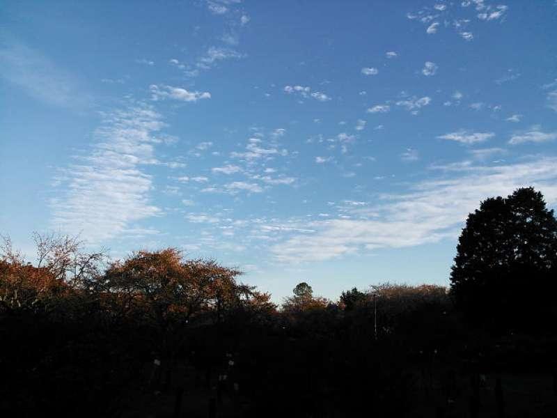 Clear Autumn Sky
