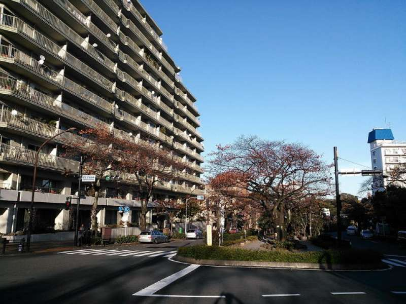 Harima-zaka slope. This place is popular for cherry blossom viewing