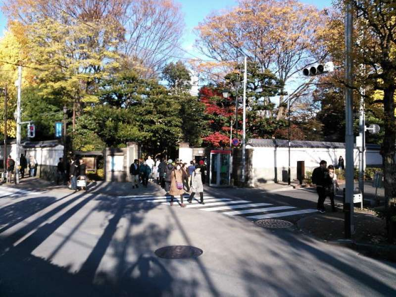 Korakuen Garden. This place is also popular with colorful autumn foliage.