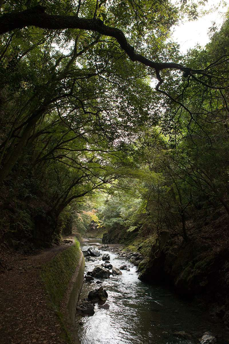 The Kiyotaki River ravine