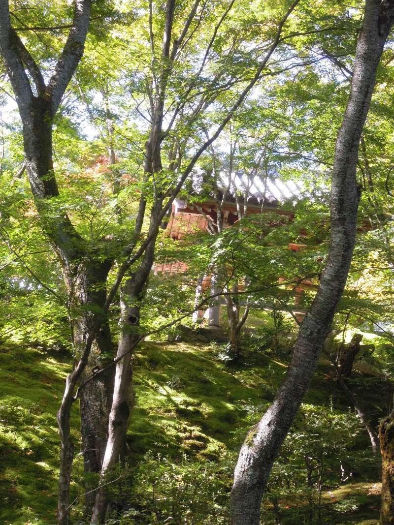 At Johjako-ji Temple
