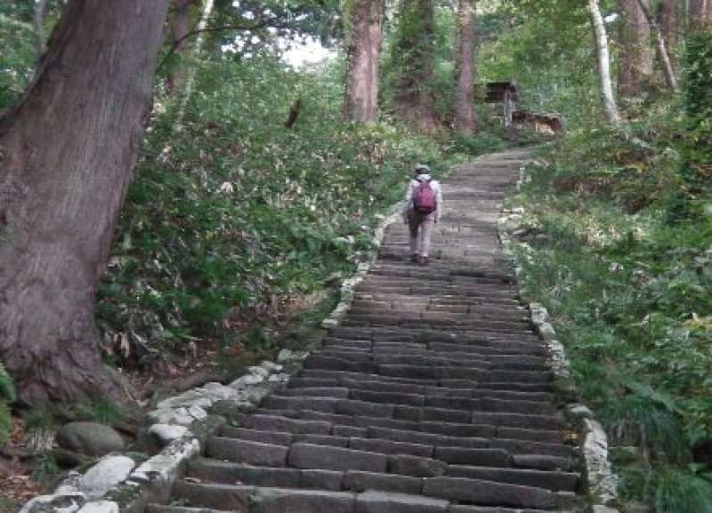 The 2km long steep steps in a forest (Michelin ★★★), we will walking down from the main area