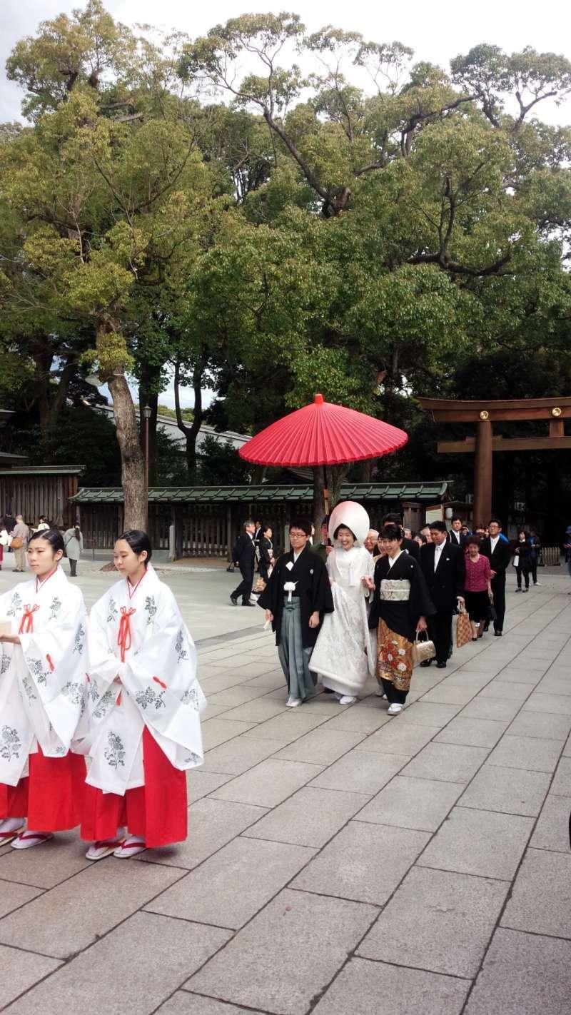 traditional Shinto style wedding ceremony at Meiji-jingu shrine.
