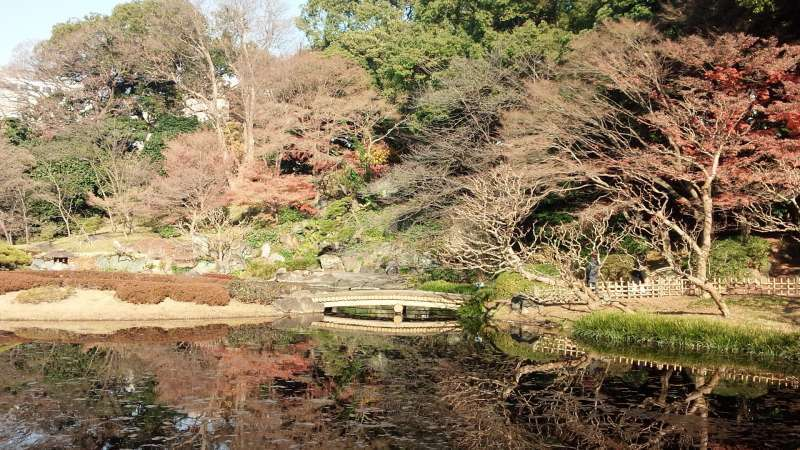 autumn colors in Imperial palace garden.