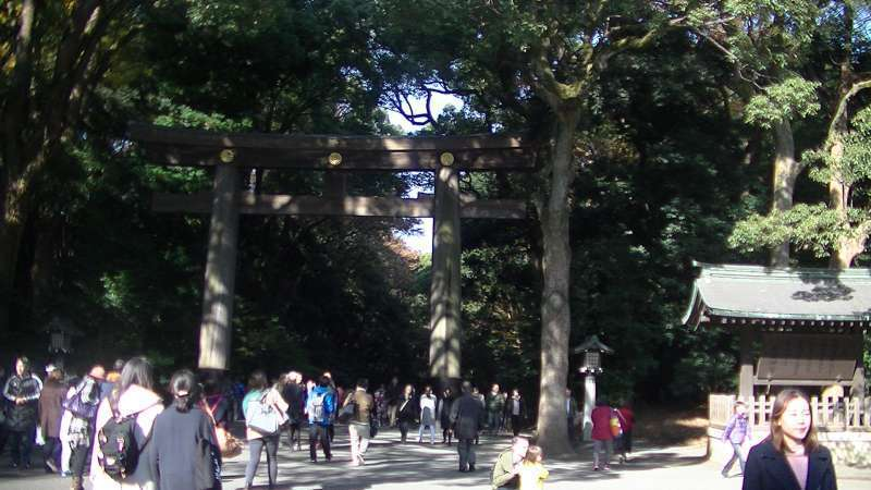 Meijijingu shrine
