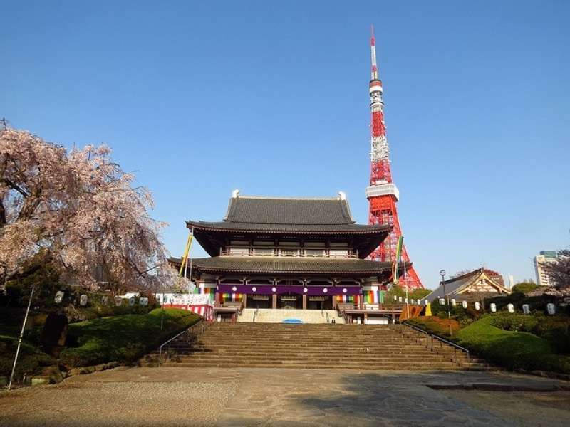 19. Adjacent to Tokyo tower, Zojo-ji Temple is one of the most popular temples in Tokyo. The wooden gate of the temple remains as an original architectural remainder of the early 17th century and is designated as an important Cultural Property of Japan.