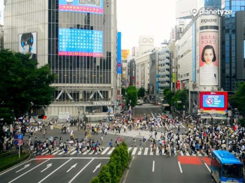 16. Many guests enjoy taking videos of Shibuya Crossing.