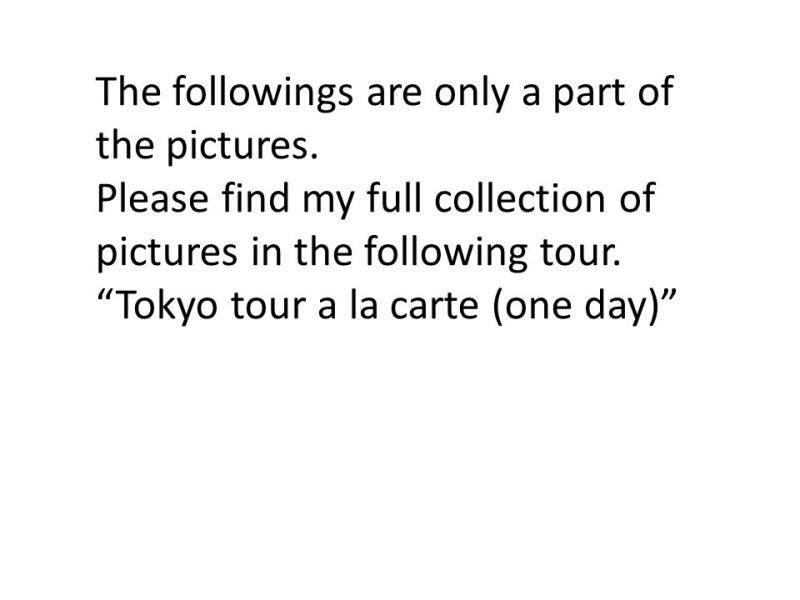 https://triplelights.com/japan/tour/tokyo-by-yuki-651