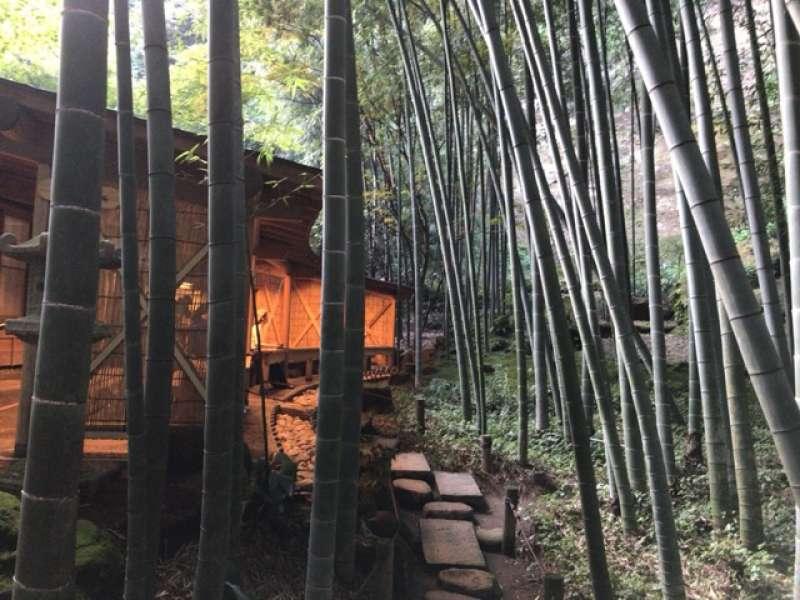 The Bamboo garden at Hokokuji Temple in Eastern Kamakura Area