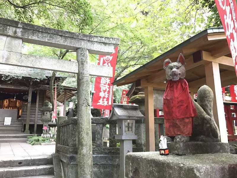 Sasuke Inari Jinja Shrine, having numerous small statues of foxes - messengers of the deity, in Central Kamakura Area