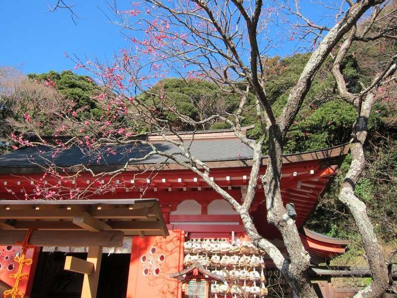 Egara Tenjinsha Shrine, enshrining the deity of study, in Eastern Kamakura Area