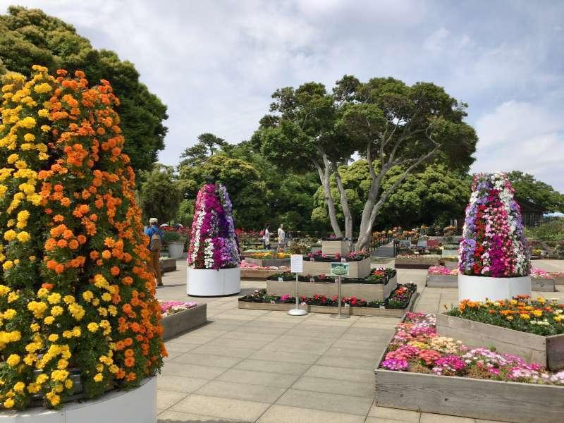 Enoshima Samuel Cocking Garden, a botanical garden, originally built by a British trader, Samuel Cocking, in Enoshima Area