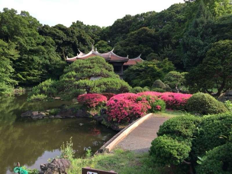 Shinjuku Gyoen Garden in Shinjuku area