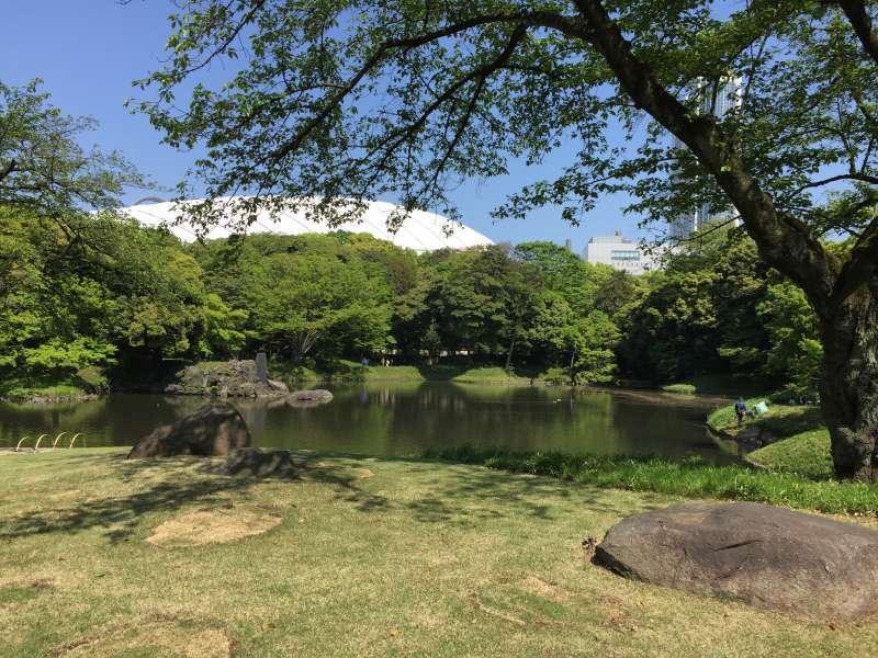 Koishikawa Korakuen Garden, a traditional Japanese-style garden, in Akihabara area
