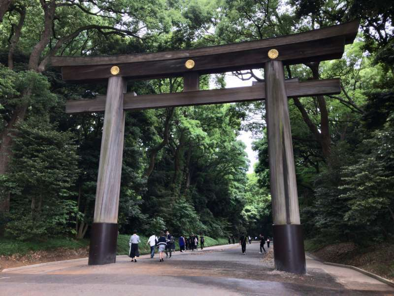 A torii gate of Meiji Jingu Shrine enshrining the deified spirits of Emperor Meiji and Empress Shoken who led Japan's modernization, guarded by a magnificent forest, in Harajuku area