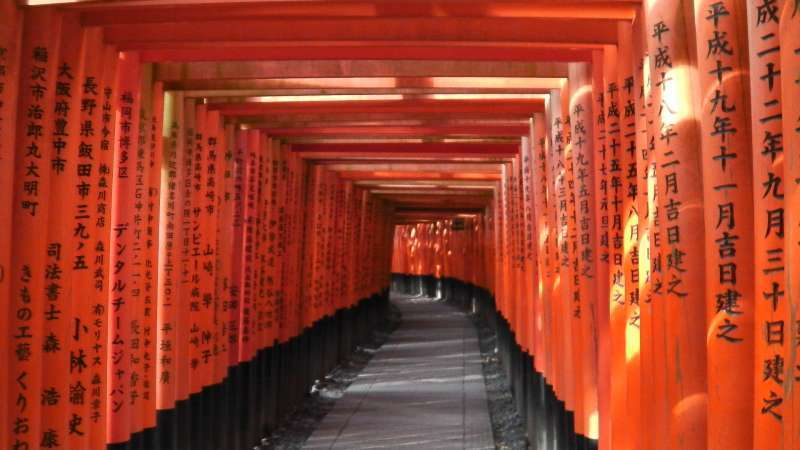 1. Miyabi: One thousand Torii gates of Fushimi-inari Shrine.