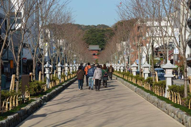 Option free of charge : Approach to Tsurugaoka Hachiman-gu Shrine