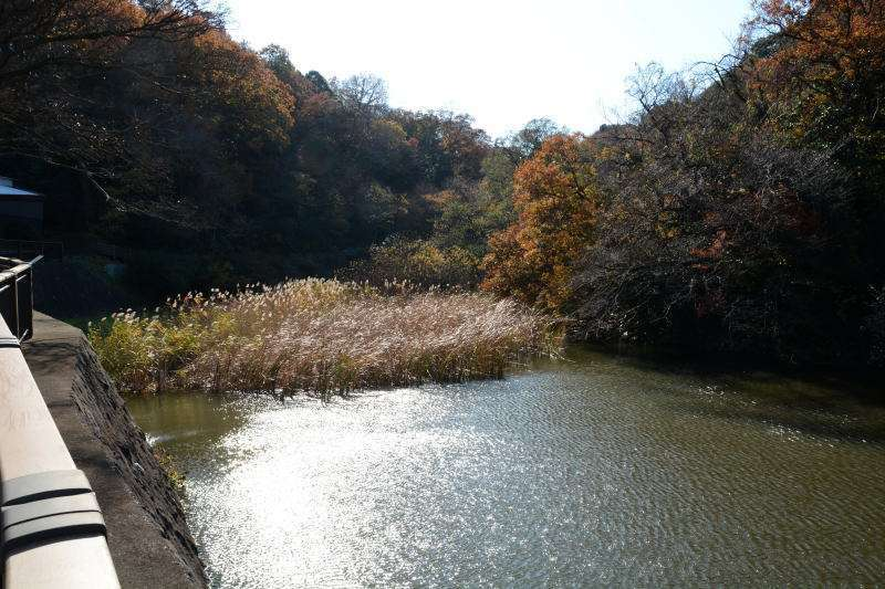 Meoto-ike Pond