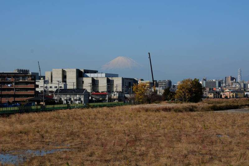 We can see the snowcapped Mt. Fuji if we are lucky.