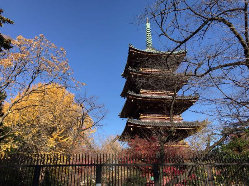 A five-story pagoda at Ueno Park in Ueno area