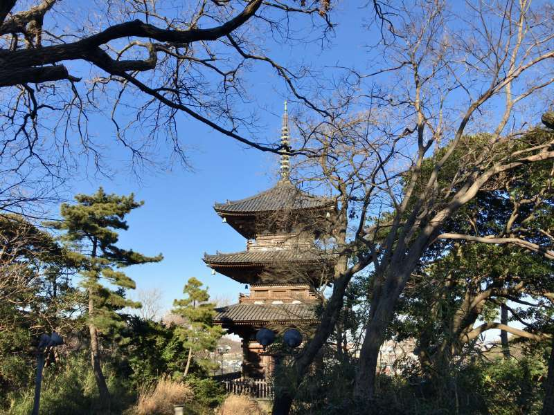 A three-story pagoda, originaly built in 1457 in Kyoto, designated as an Important Cultural Asset, in Sankeien Garden