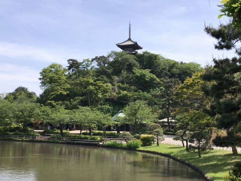Sankeien Garden, a spacious traditional Japanese-style garden, where you can see a lot of historic buildings relocated from all over Japan