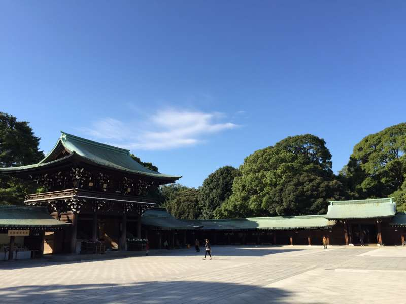 Magnificent Meiji Shrine