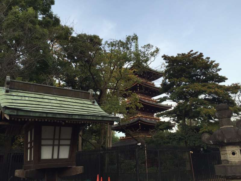 Five-story pagoda in Ueno Park.