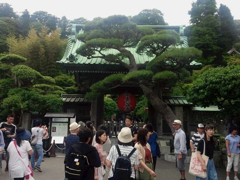 Hasedera Temple, famous for the highest surviving wooden buddhist statue with eleven faces and beautiful gardens with plenty of seasonal flowers.