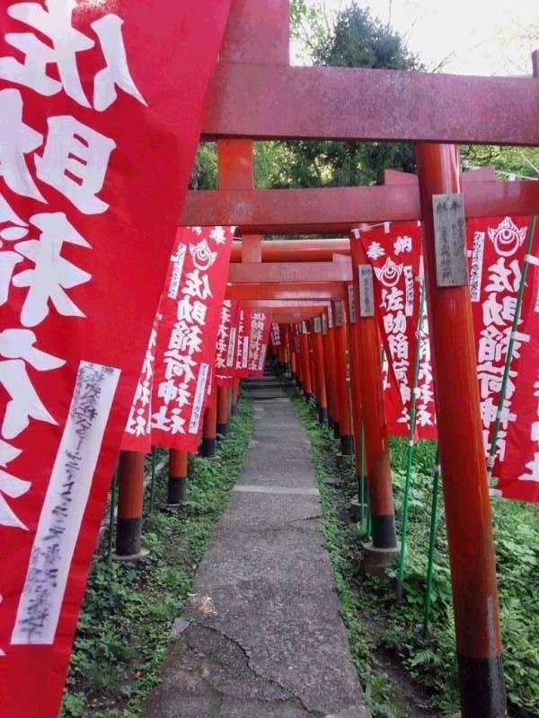 Sasuke Inari Shrine, the wonderful power spot shrine, famous for very impressive red colored torii gates leading you to the uniquely designed pretty fox statues.