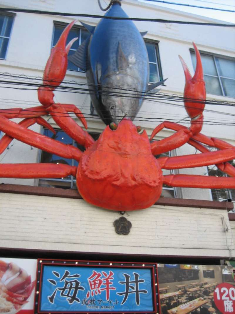 You can see huge crab and tuna in fish market.