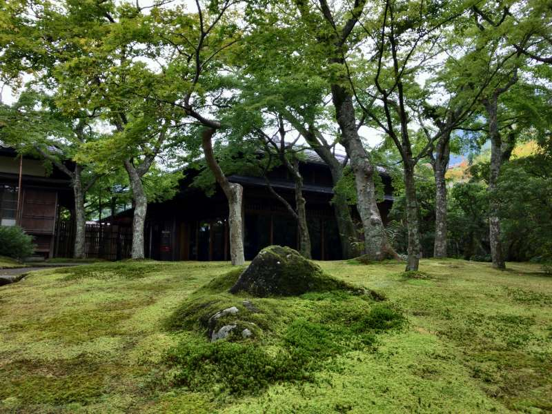 The traditional Japanese-style garden in Hakone Museum of Art