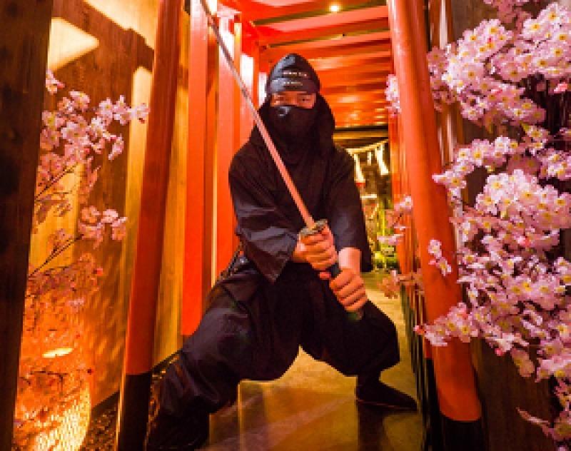 Ninja Practice