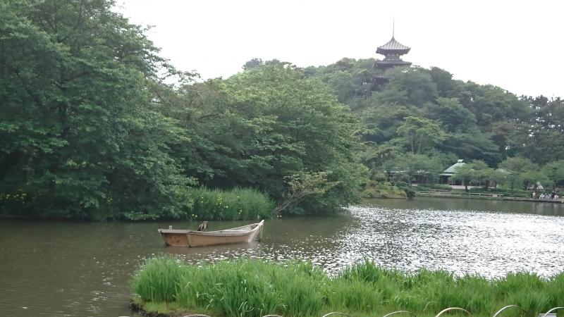 Japanese gardena t Sankei-En