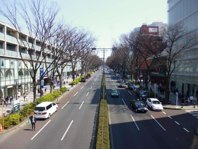Omote Sando, which is the main approach to Meiji Shrine, is famous as a high- end shopping street. If you are going to look for something like Japanese as souvenirs, it is good for you to pop in a famous shop, Oriental Bazaar.