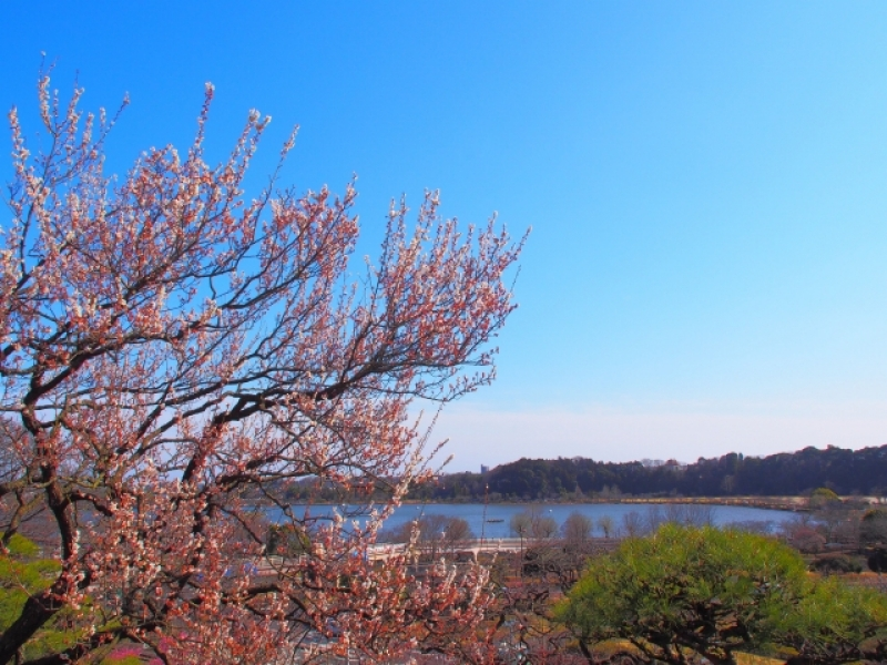 Kairakuen Park ,Mito